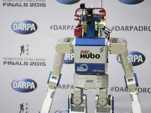 Photo of Hubo 2 or related robot.