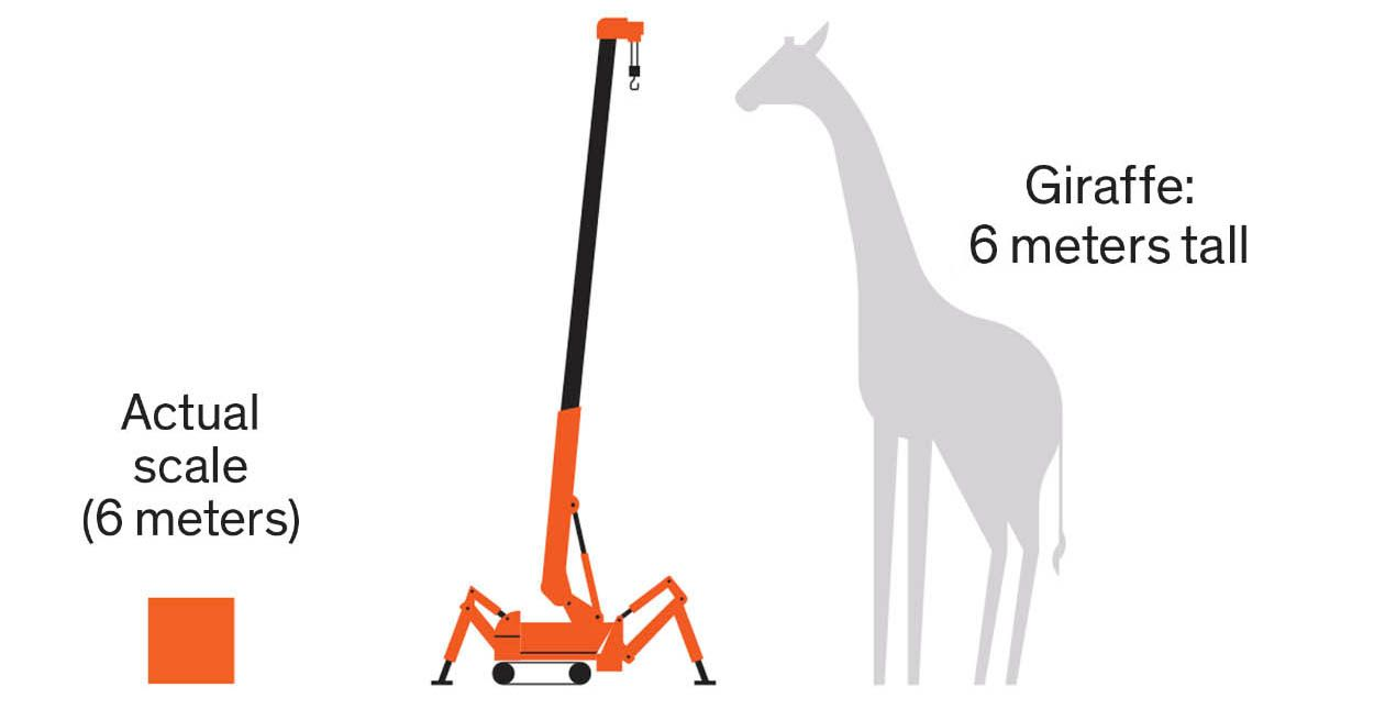 Illustration of a giraffe and a crane,