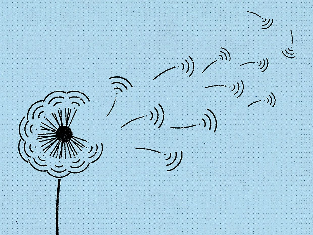 Illustration of wifi bars depicted as petals falling off a flower.