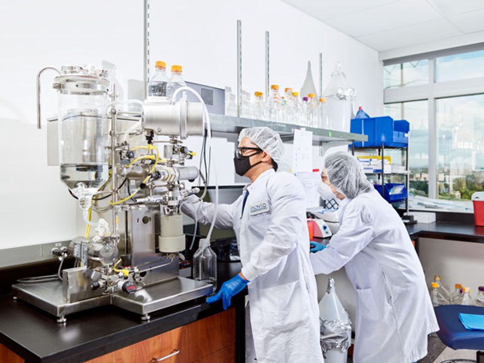 Image of a scientists working with DNA being purified.