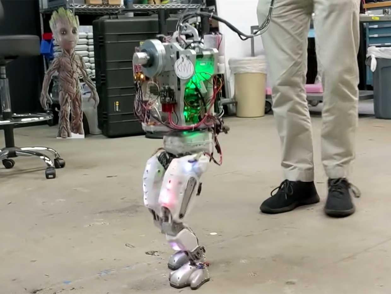 Project Kiwi is a custom bipedal human robot.
