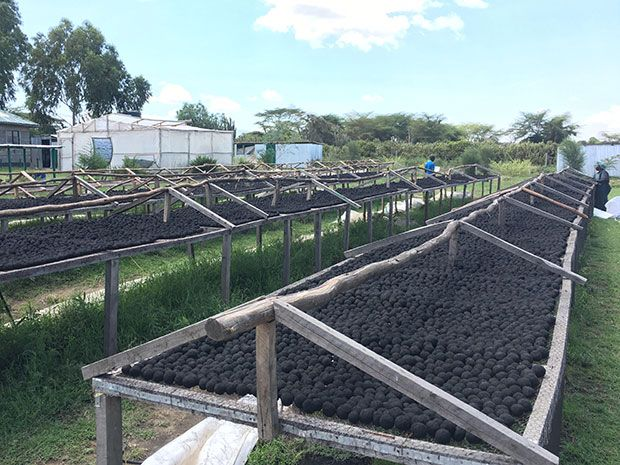 Kenyan Startup Uses the Sun to Turn Human Waste into Cooking Fuel