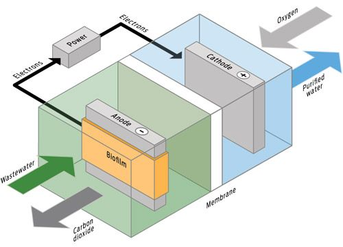 Eight Technologies For Drinkable Seawater - IEEE Spectrum