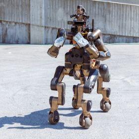 IIT Centauro robot