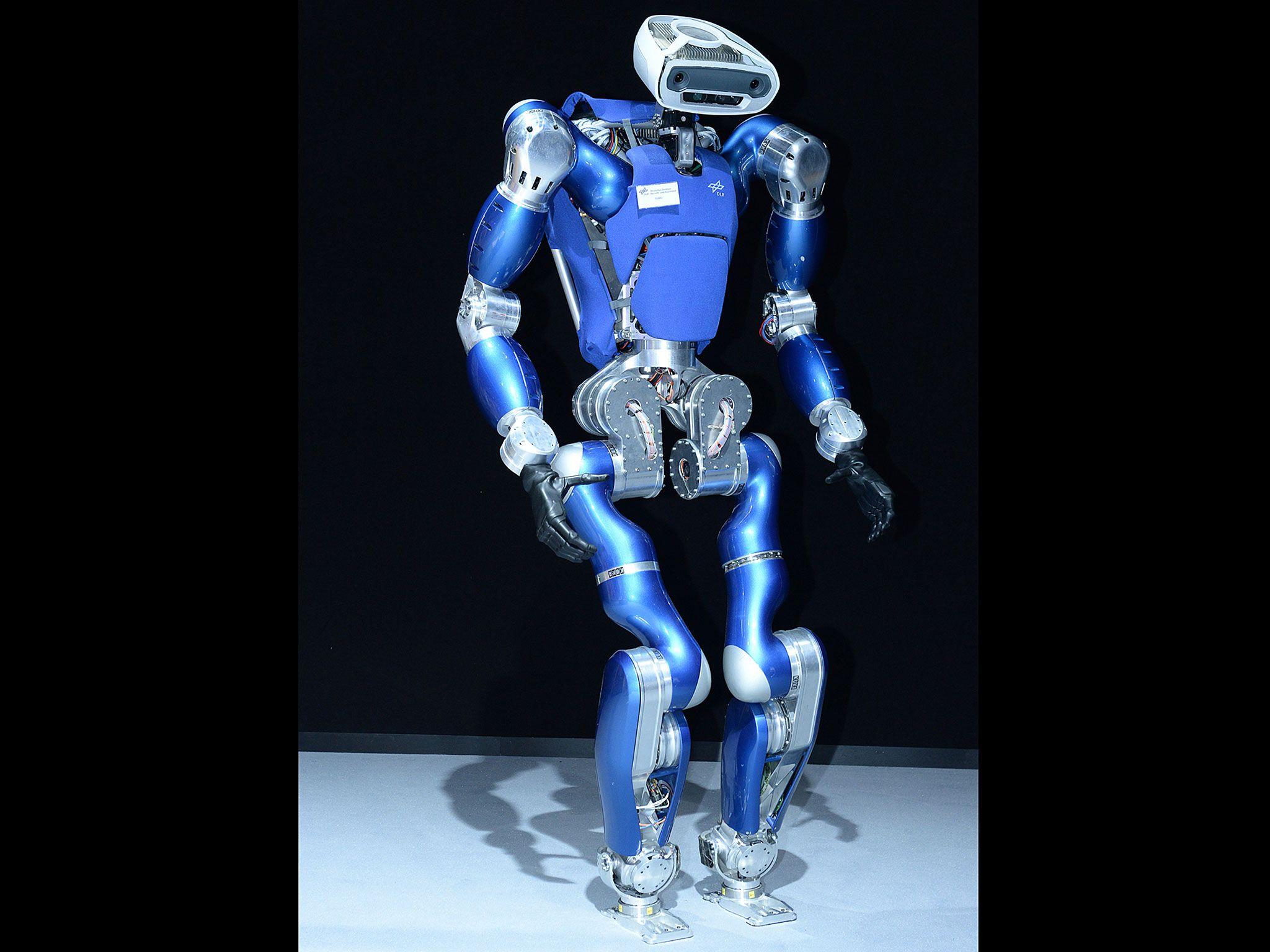 DLR Toro robot
