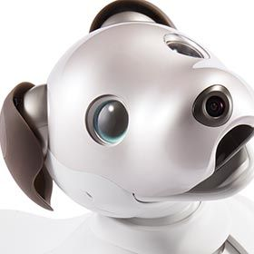 Sony's Aibo dog