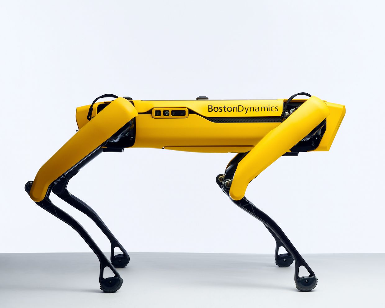 Boston Dynamics Spot Robot Dog Now Available For 74 500 Ieee Spectrum