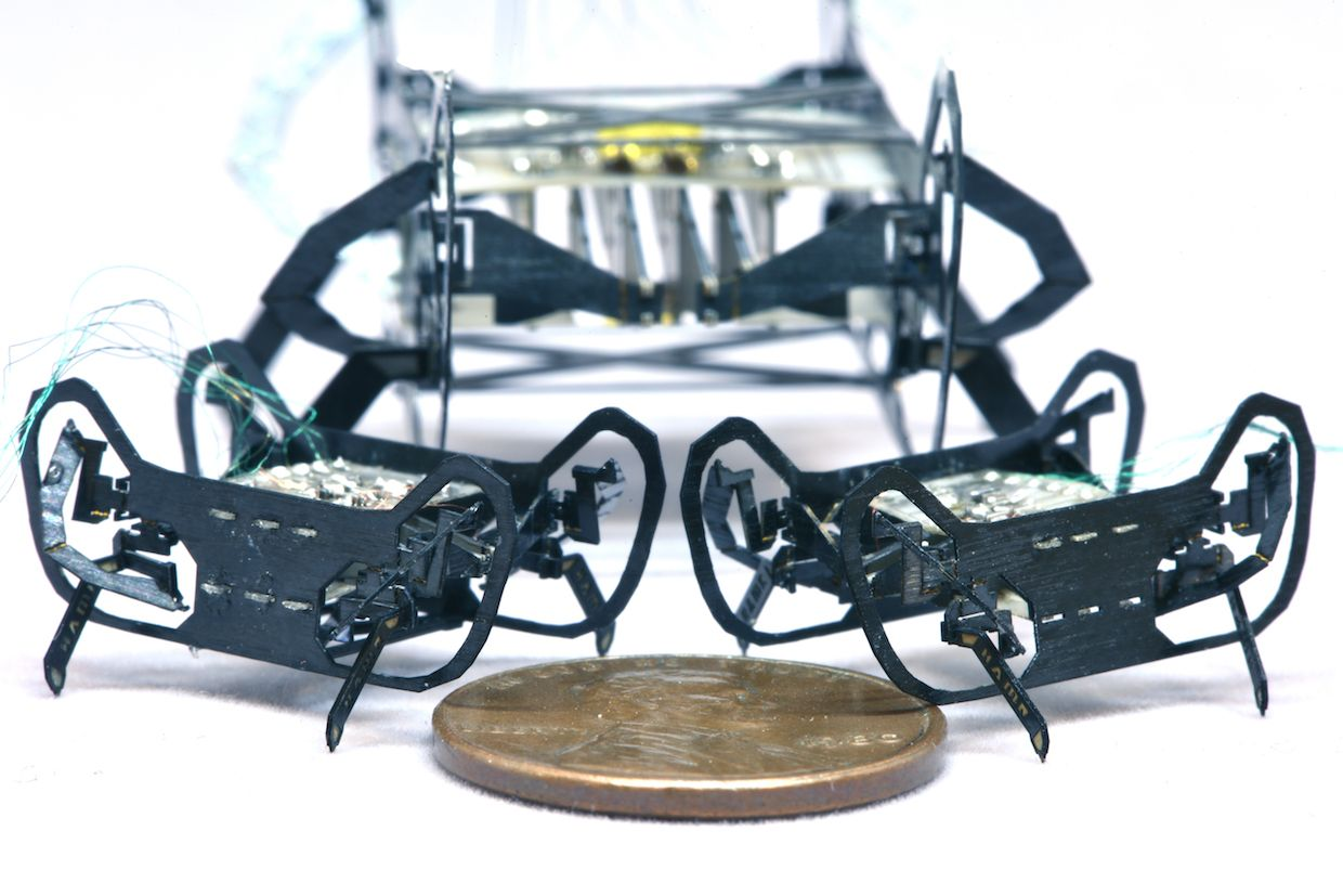 HAMR-Jr Is a Speedy Quadrupedal Robot the Size of a Penny