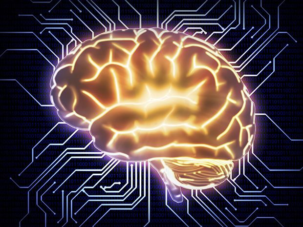 comparing computer to the human brain Some writers describe a computer's central processing unit, or cpu, as the brain of the machine while this is something of an exaggeration as the cpu does not think the way you do, there are some real similarities between it and the human brain.