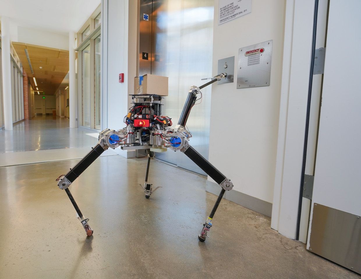 RoMeLa's Newest Robot Is a Curiously Symmetrical Dynamic Quadruped