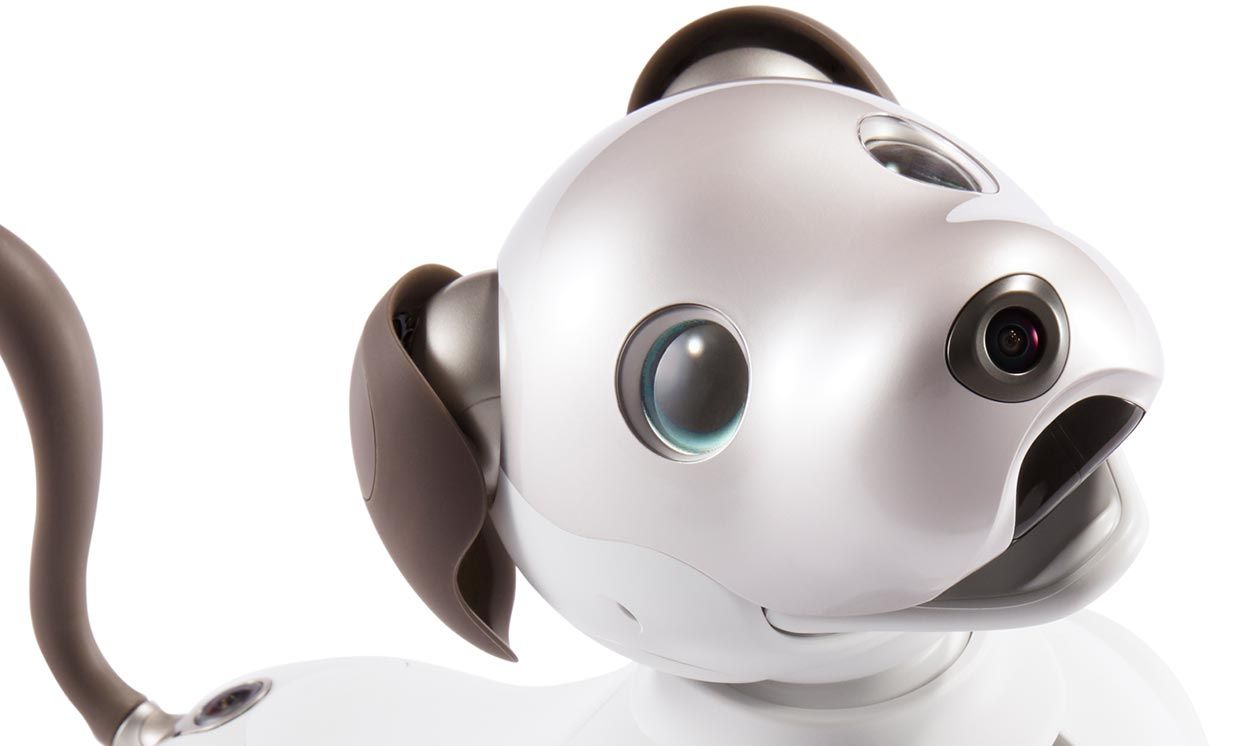 Sony's Aibo dog.