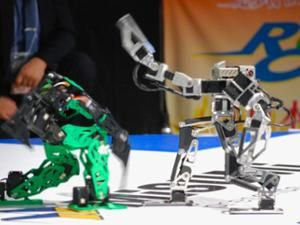 ROBO-ONE Humanoid Fighting Tournament