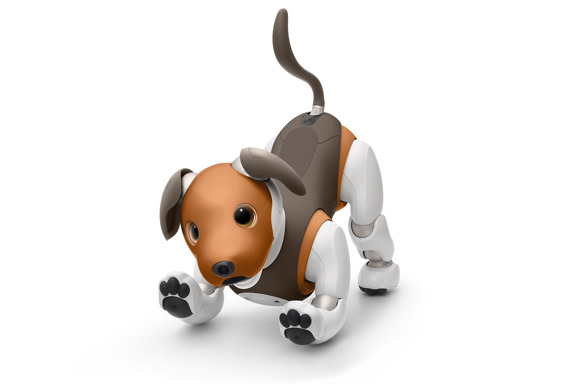 Sony's Aibo robot dog, chocolate edition