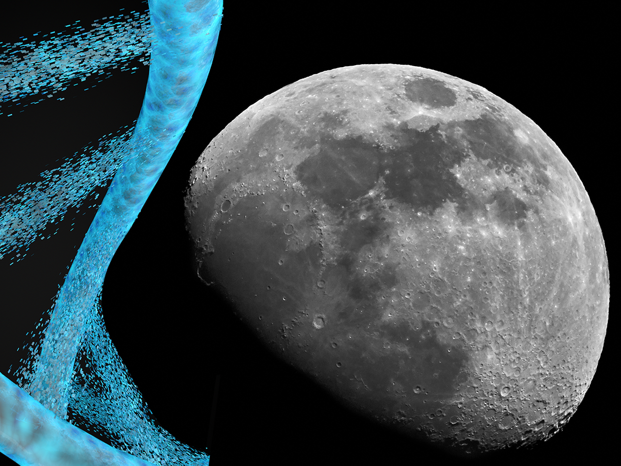 This Startup Wants to Stash Your DNA on the Moon