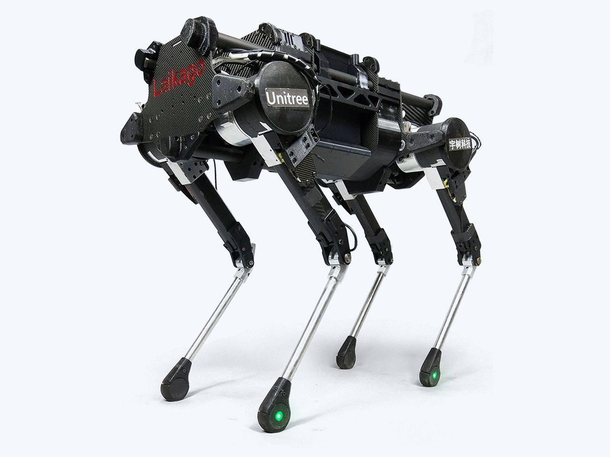 Laikago quadruped robot created by Chinese robotics startup Unitree