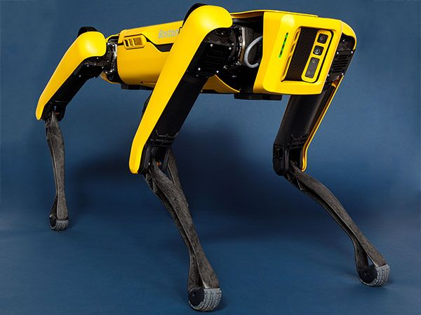 Boston Dynamics\' Spot Robot Dog Goes on Sale