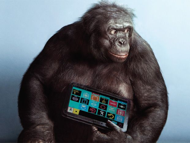 apes with apps ieee spectrum