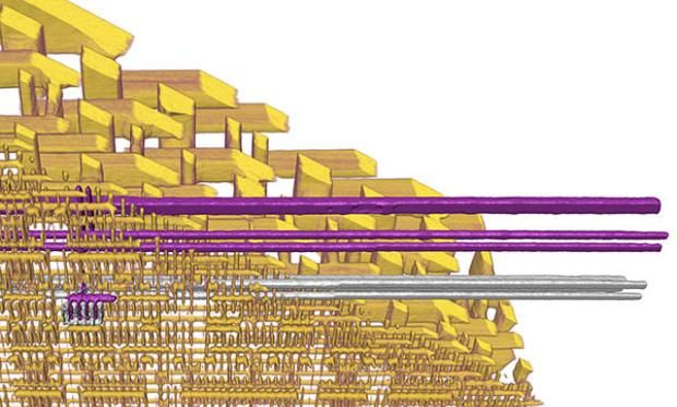 X-rays Map The 3d Interior Of Integrated Circuits