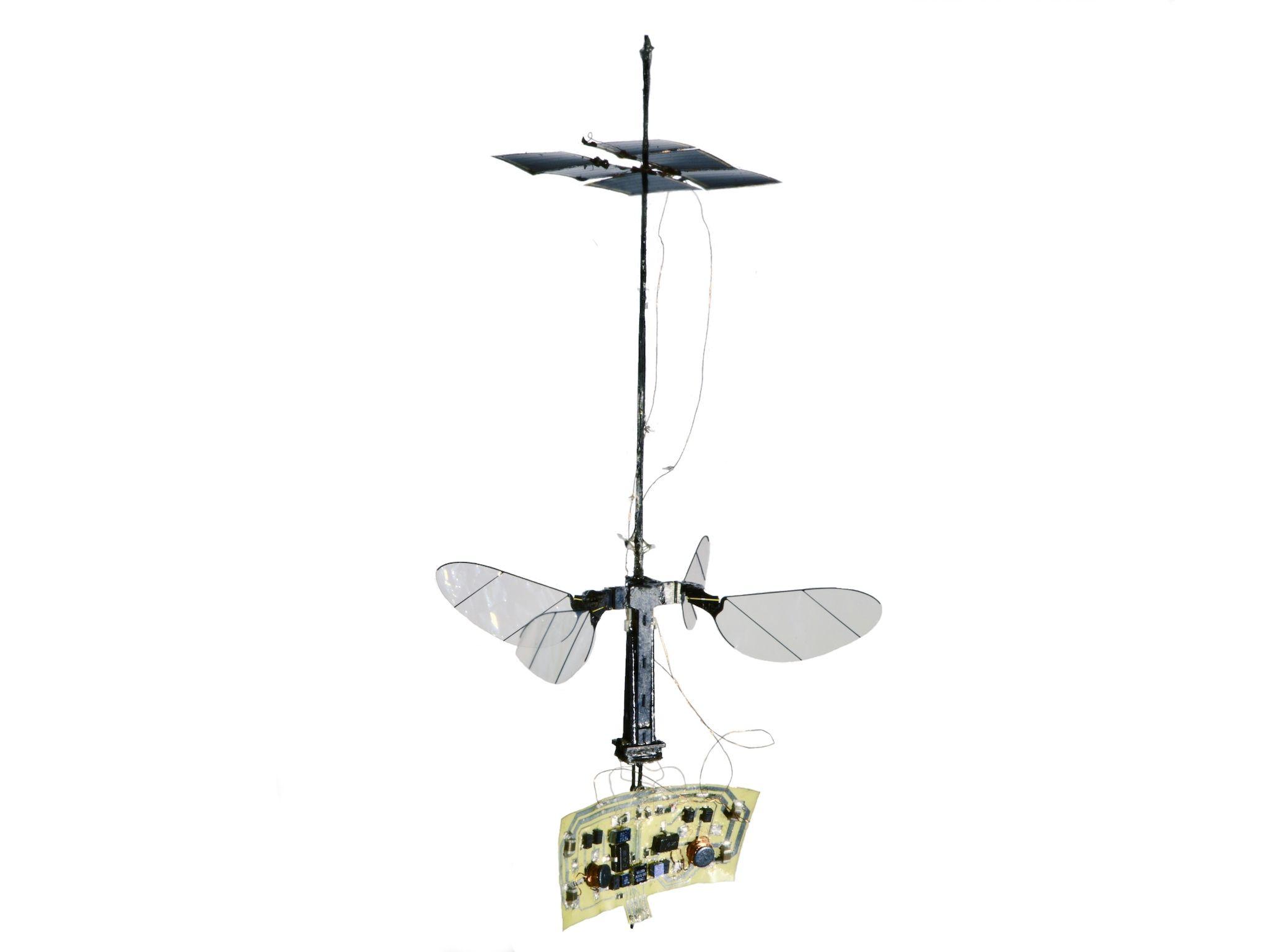 Solar-Powered RoboBee X-Wing Flies Untethered