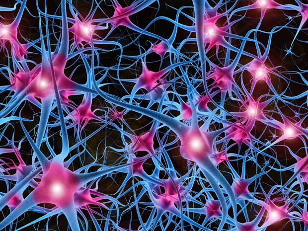biggest neural network ever pushes ai deep learning ieee spectrum