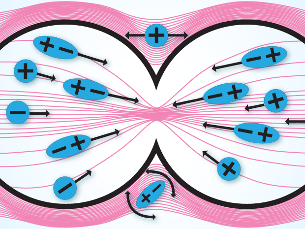Electric Fields Fight Deadly Brain Tumors Ieee Spectrum