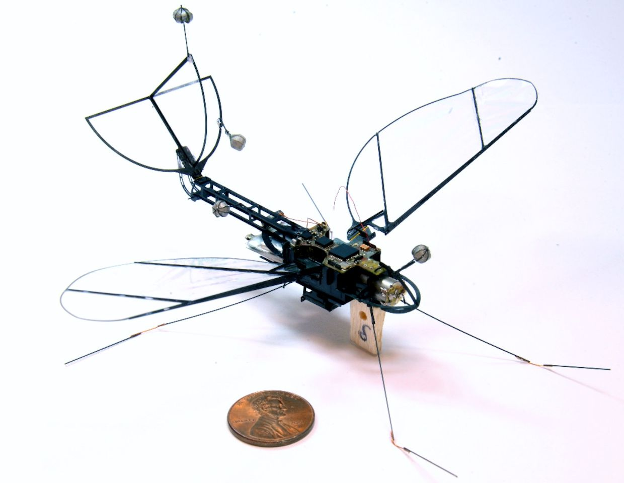 Library Design Harvard Launches Robot Moth Ieee Spectrum