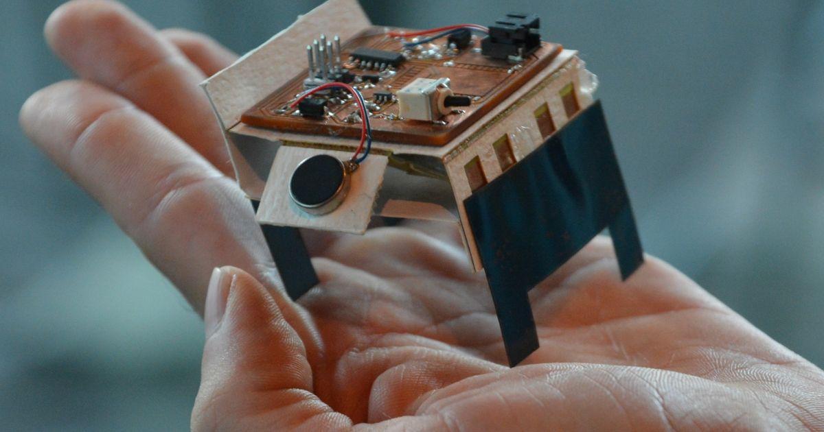 Designing Customizable Self-Folding Swarm Robots