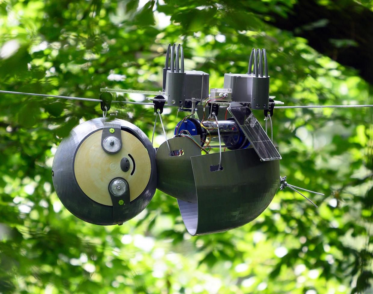 Why We Need Robot Sloths