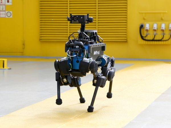 Photo of ANYmal or related robot.