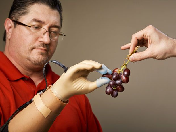 "<strong>Complete Control:</strong> With the haptics in his prosthetic hand turned on, Spetic can perform delicate tasks like plucking a grape, grasping a flower petal, and unscrewing a cap. ""It is my hand,"" he says."