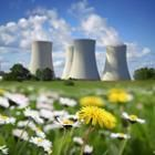 Dandelions and green grass are pictured in front of four parabolic cooling towers, which are sometimes used at nuclear power plants.