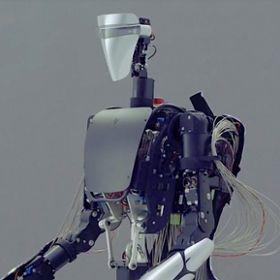 MELTANT avatar robot