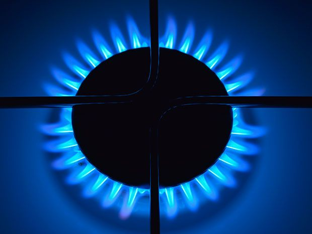 Gas stove ring alight with blue natural gas flame