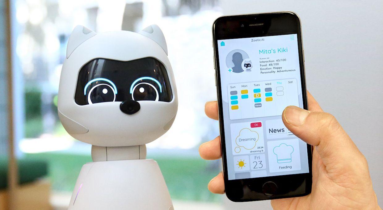 Kiki social robot