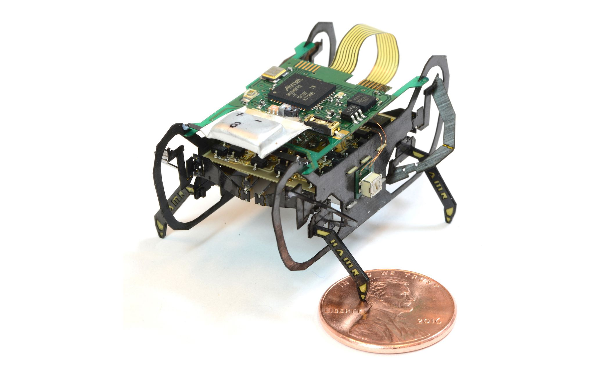 Meet HAMR, the Harvard Ambulatory MicroRobot