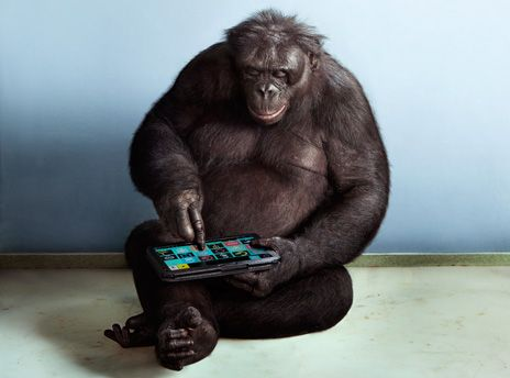 Apes with Apps: IEEE Spectrum Article
