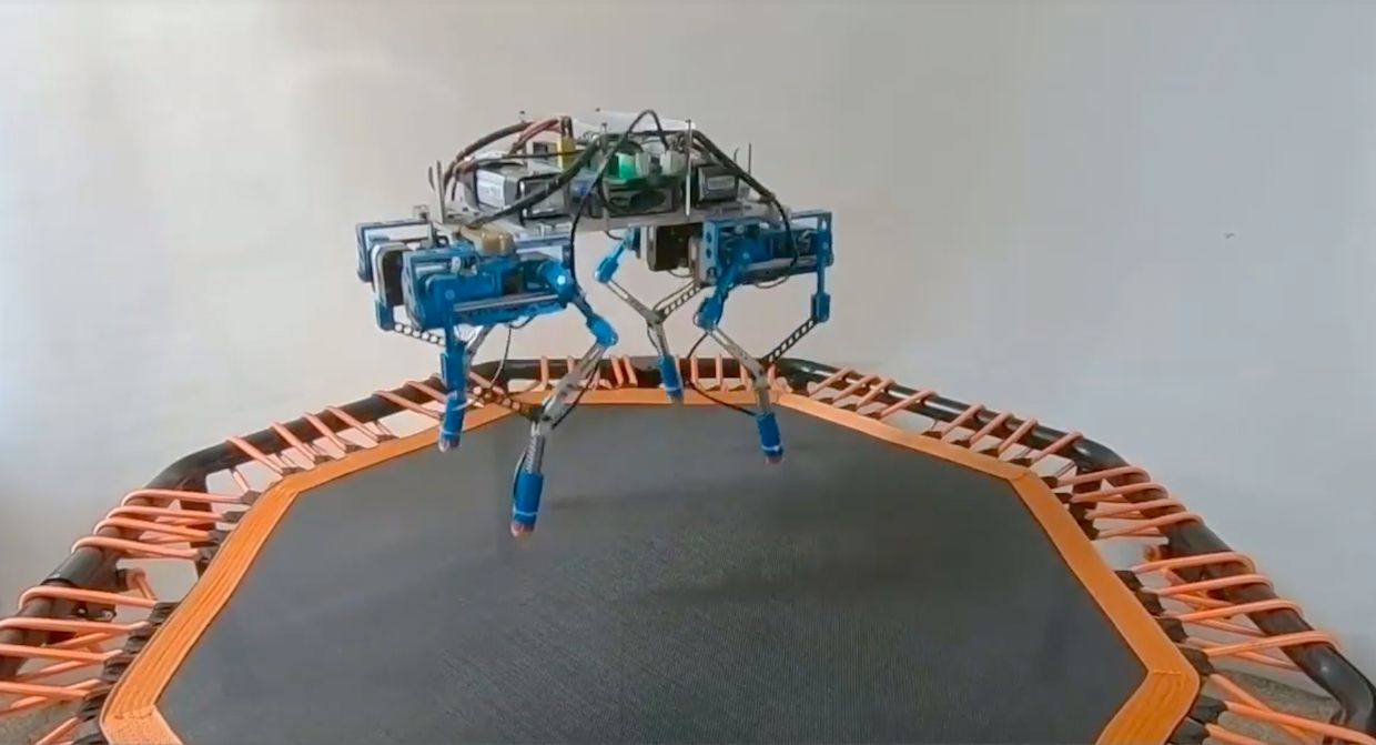 Quadruped Robot on a Trampoline