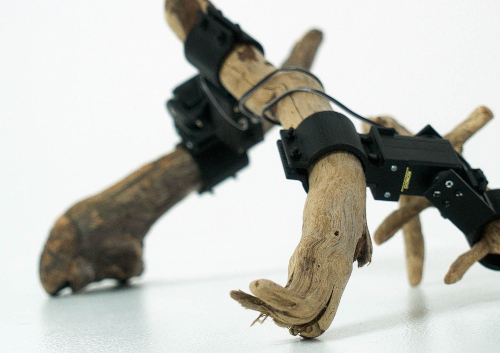 Robot Made Out of Branches Uses Deep Learning to Walk