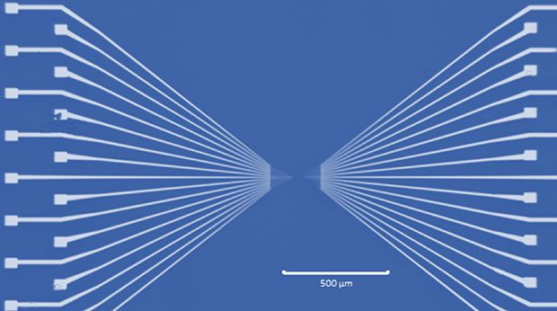 Optical image of the electrodes fabricated by nano-imprint lithography. Nanoscale electrodes (50nm width with separation of 50nm) fan out to microscale patterns and eventually to the contact pads.