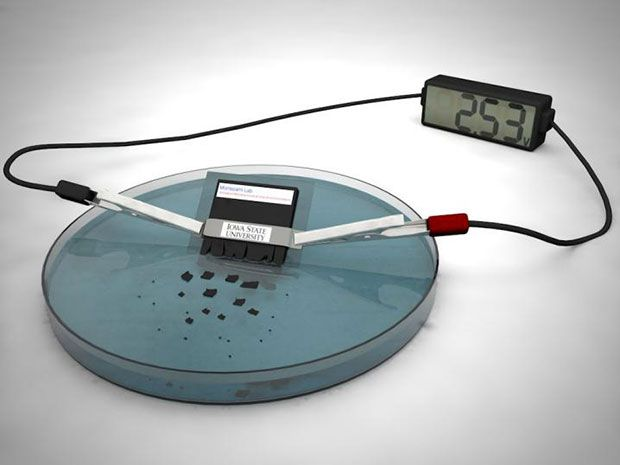 This Self-Destructing Battery Dissolves in Water After Use