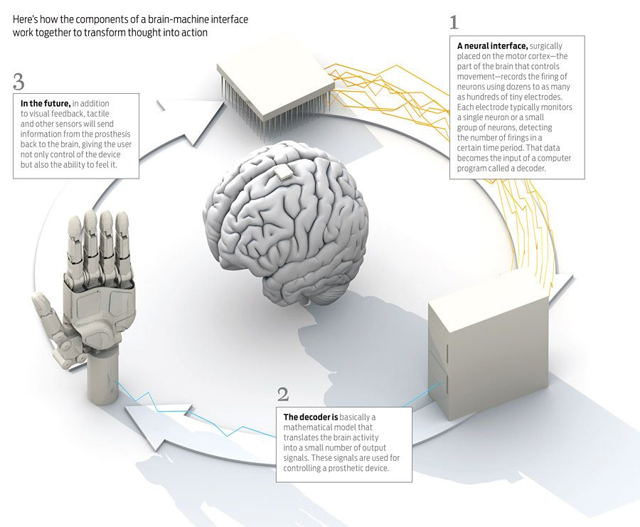 Brain to machine interface - How to Control a Prosthesis With Your Mind