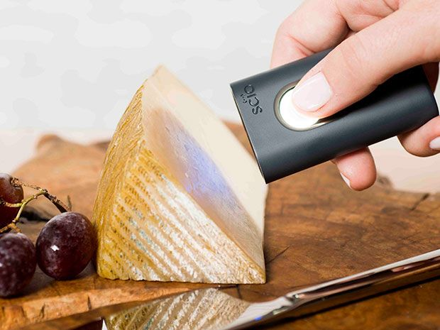 Photo shows a hand holding a tool called SCiO next to a piece of cheese