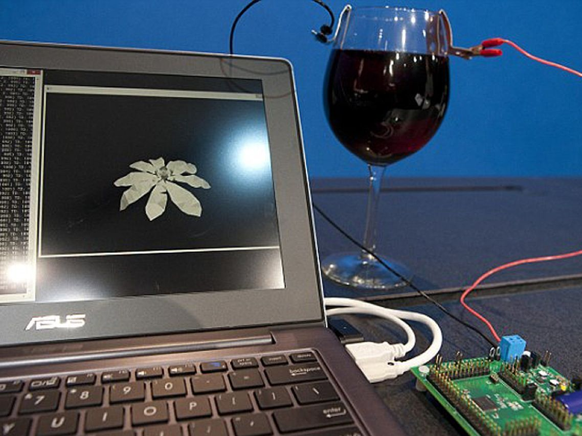Who would've guessed that a bold-flavored Bordeaux could double as a battery? Researchers at Intel recently ran an experiment in which they drew enough power from a glass of red wine to run a low-power computer. The exercise was part of the chipmaker's focus on future electronic devices that will be able to draw what little energy they need from ambient light, a human's body heat, or the contents of a liquor cabinet.