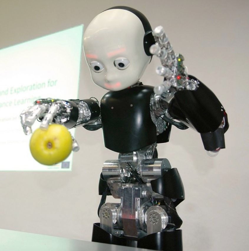 iCub has many parents: 10 European robotics labs. The size of a 3 1/2-year-old, it's learning to walk, talk, and handle objects. It's probably the most advanced—and expensive—artificial child ever conceived.