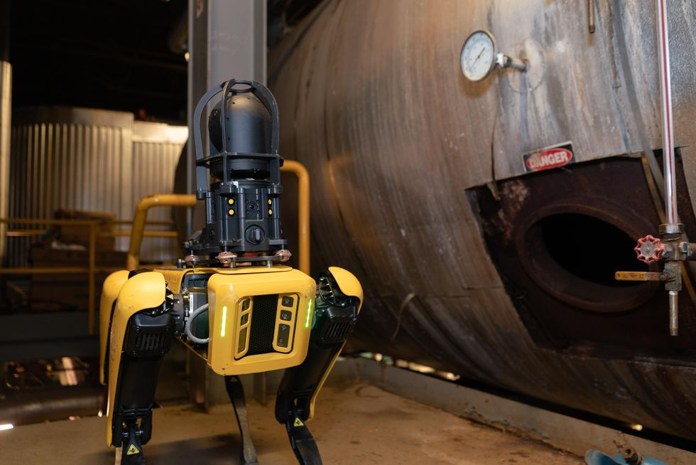 Yellow and black four legged robot standing in a factory