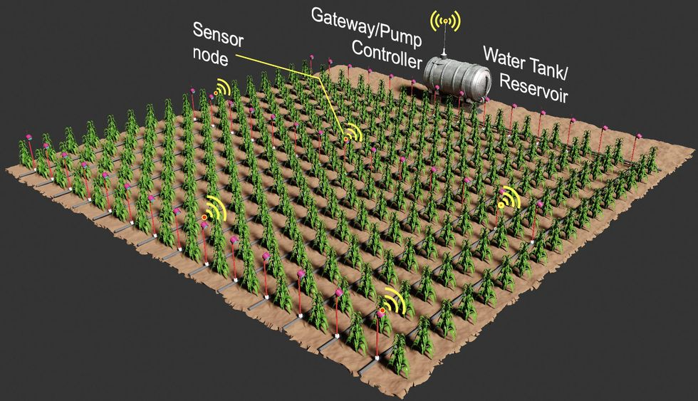 brown square representing a farm with rows and rows of green plants. pink poles with light sensors are on three rows. There are 5 yellow wifi symbols, labelled sensor node. A large silver canister on the far end is labelled Water Tank/Reservoir. An antenna shape on top is labelled Gateway/Pump controller.
