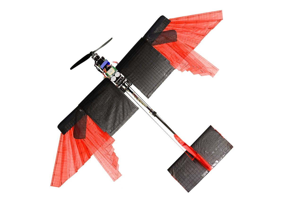Feathered morphing drone