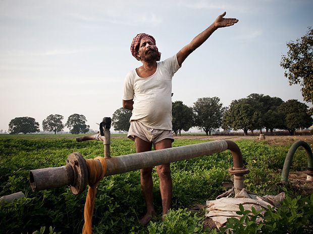 Harnek Singh on his farm in Punjab, India.