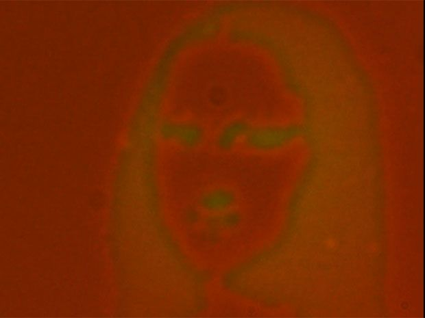 Image of Mona Lisa that appears and disappears