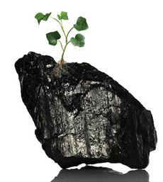 Clean Coal Mirage?